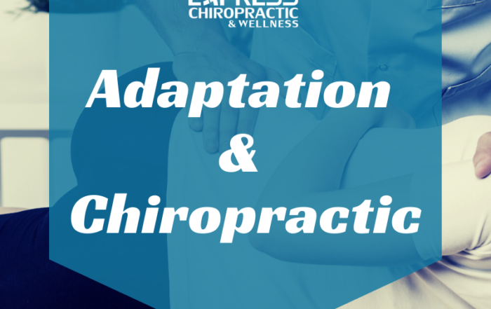 adaptation and chiropractic